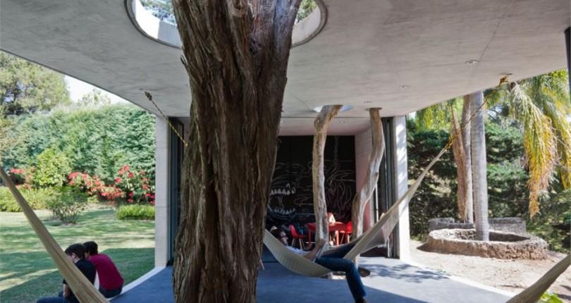 Estos arquitectos decidieron respetar la naturaleza con sus diseños