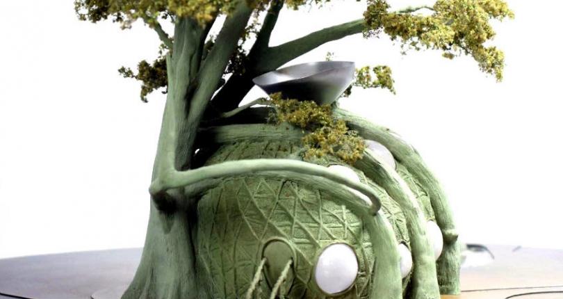 De una semilla crece un árbol casa